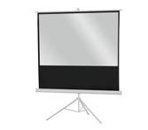 Ecran de projection sur pied celexon Economy 184 x 104 cm