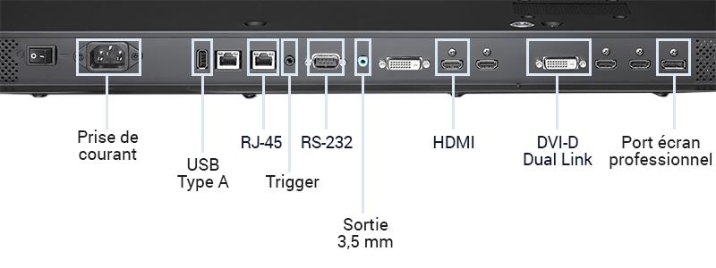 La connectique d'un écran professionnel