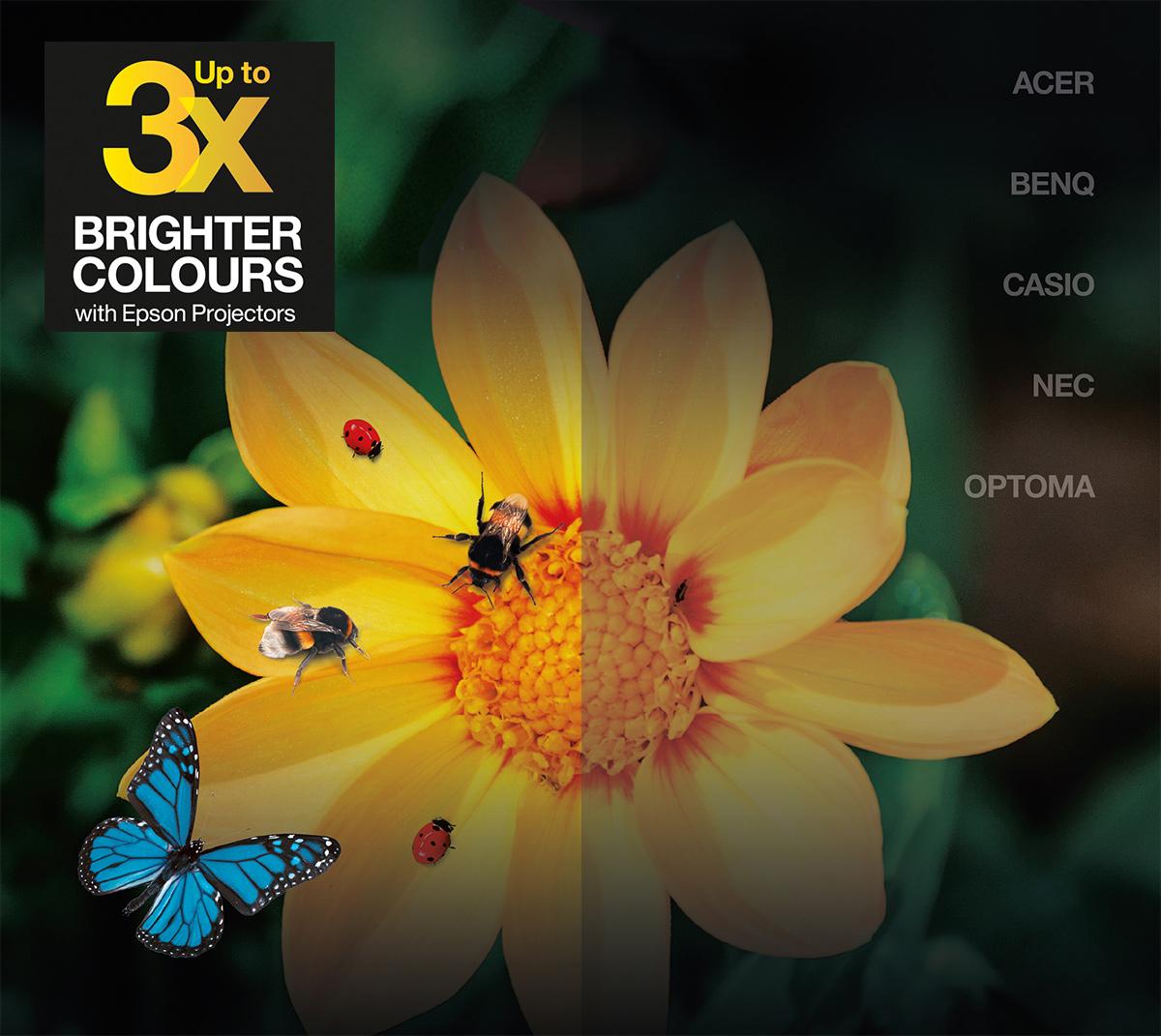 Epson Color Brightness - Comparaison des projecteurs Epson avec d'autres fabricants